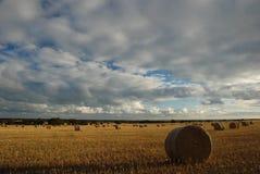 Rotoli del fieno. Australia Meridionale fotografia stock libera da diritti