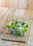 Rotoli di molla freschi con le verdure di stile tailandese Fotografia Stock Libera da Diritti
