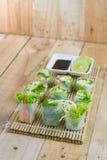 Rotoli di molla freschi con le verdure di stile tailandese Fotografia Stock