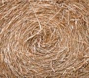 Rotolo del cerchio di paglia di riso Fotografia Stock