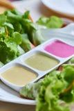 Rotolo dell'insalata della verdura fresca con il condimento dell'insalata variopinto tre Fotografie Stock Libere da Diritti