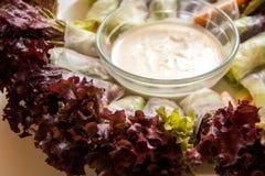 Rotolo dell'insalata della verdura fresca, pasto sano per la dieta Immagini Stock Libere da Diritti