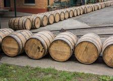 Rotolo di barilotti alla distilleria fotografia stock libera da diritti