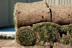 Rotolo di erba verde Immagine Stock