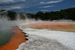 Rotorua royalty free stock photos