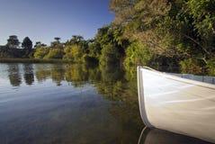 Озеро Rotorua, Новая Зеландия стоковые изображения rf