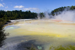 Rotorua Champagne pool Waiotopu Royalty Free Stock Photography