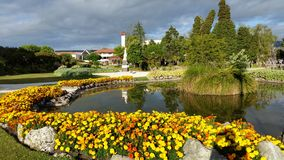 Rotorua gardens Royalty Free Stock Photos