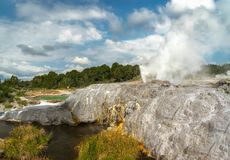 Rotorua Geysers, New Zealand royalty free stock photos