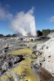 Rotorua Geysers - New Zealand Royalty Free Stock Images