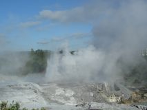 Rotorua Geysir di mattina Fotografie Stock Libere da Diritti