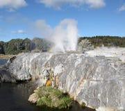 Rotorua - le Nouvelle-Zélande Photos stock