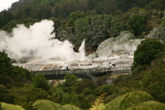 Rotorua New Zealand Royalty Free Stock Photo