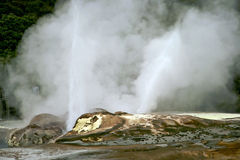 Rotorua New Zealand Royalty Free Stock Photos