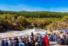 ROTORUA, NIEUW ZEELAND - OKTOBER 10, 2018: Menigten die op dagelijkse uitbarsting van Dame Knox Geyser in wai-o-Tapu zitten te le stock afbeelding