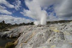 Rotorua Nuova Zelanda fotografia stock libera da diritti