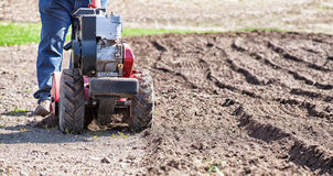 Rototiller cultivator in the garden Stock Image