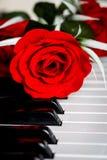 Rotrose auf einem Klavier Lizenzfreie Stockfotografie
