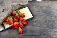 Rotrose auf einem Notizbuch und einem Bleistift Stockfoto