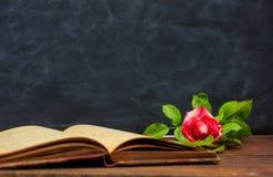 Rotrose auf einem Weinlesebuch auf dunklem Hintergrund Stockfotografie