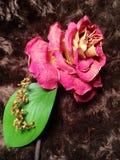 Rotrose auf einer Pelzdecke Lizenzfreies Stockfoto