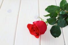 Rotrose auf hölzernem Hintergrund Stockbild