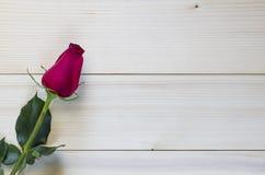 Rotrose auf hölzernem Hintergrund für Valentinstag stockbild