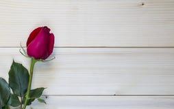 Rotrose auf hölzernem Hintergrund für Valentinstag Stockbilder