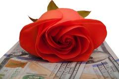 Rotrose, die auf dem Geld auf einem weißen Hintergrund liegt Lizenzfreie Stockfotos