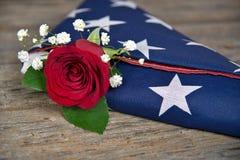 Rotrose in gefalteter Flagge Lizenzfreies Stockfoto