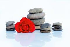 Rotrose mit Wassertropfen und -steinen Lizenzfreies Stockfoto