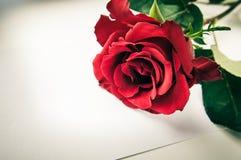 Rotrose und weißes Blatt Papier Lizenzfreies Stockfoto