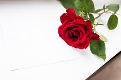 Rotrose und weißes Blatt Papier Stockbilder