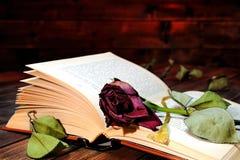 Rotrose verwelkte rosafarben durch die Seiten eines alten Buches gelb gefärbtes b Stockfoto