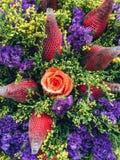 Rotrosenblumenmakrodetail stockfoto