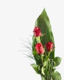 Rotrosenblumenstrauß Stockbilder