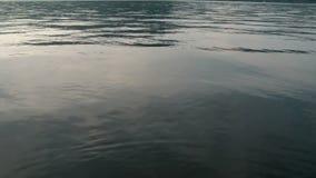 Rots die in het Water vallen - Langzame Motie stock video