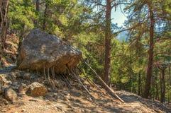 Rots door houten stokken in Samaria Gorge op Kreta wordt gesteund dat Stock Afbeeldingen