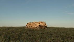 Rots in een midden van grasrijk gebied, voor blauwe hemel render Royalty-vrije Stock Foto's