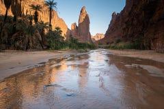 Rots en oasescènes in Wadi Disah in Tabuk-Gebied, Saudi-Arabië stock afbeelding