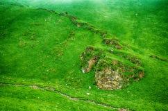 Rots in groen Stock Foto's