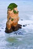 Rots in het overzees stock afbeelding