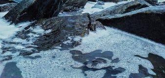 Rots in het water stock foto's