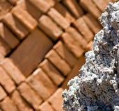 Rots met baksteenachtergrond royalty-vrije stock fotografie