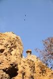 Rots op berg met vogels die op blauwe hemel vliegen Stock Afbeeldingen