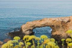 Rots op de Mediterrane kust stock afbeelding