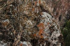 Rots, steenclose-up, Bashkortostan stock afbeelding