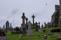 Rots van Cashel Royalty-vrije Stock Foto
