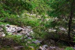 Rotsachtig beklim de berg Stock Foto