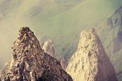 Rotsachtig bergenlandschap stock afbeelding